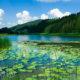 route des lacs du Jura à moto