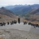 guided and self-guided motorcycle tours and rental in the route des grandes alpes in France and europe. Motorbike road trip in the Great Alpine Road.