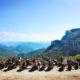 itineraire moto de la route napoleon
